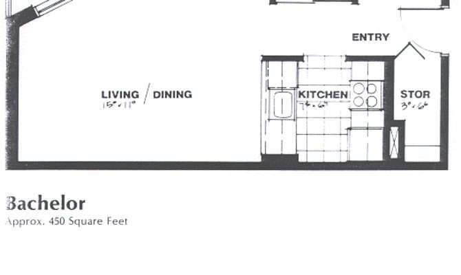 Bachelor Apartment Floor Plan Design Decoration