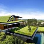 Beautiful Green Roof Design Modern House Home Ideas