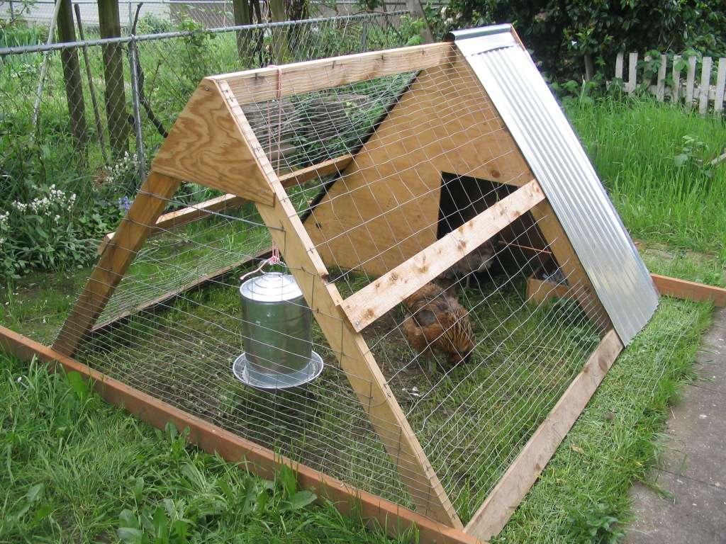 Build Frame Chicken Coop