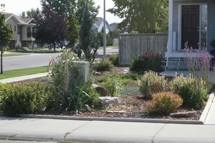 Corner Lot Xeriscape Much Smaller Than Ours But Some Ideas Layout