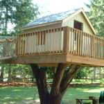 Creative Tree House Design Ideas