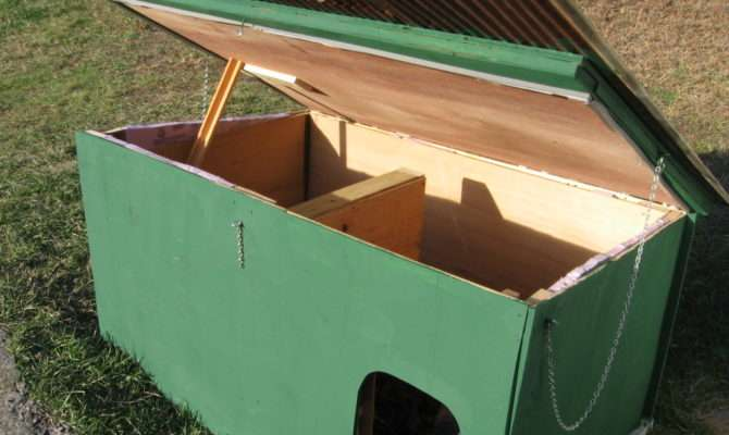 Dog House Lid