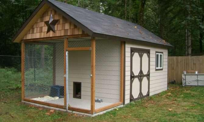 Dog House Shed Kennel Design Ideas Tips Liquidators