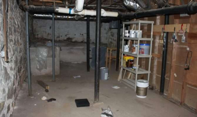 Domestic Revolt Old House Damp Moldy Basement