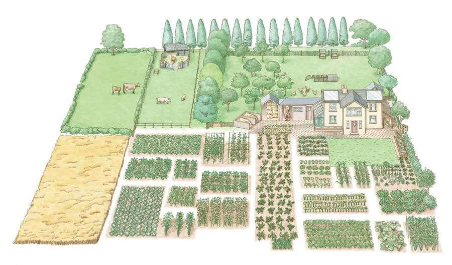 Even Small Acre Farm Can Create Self Sufficient