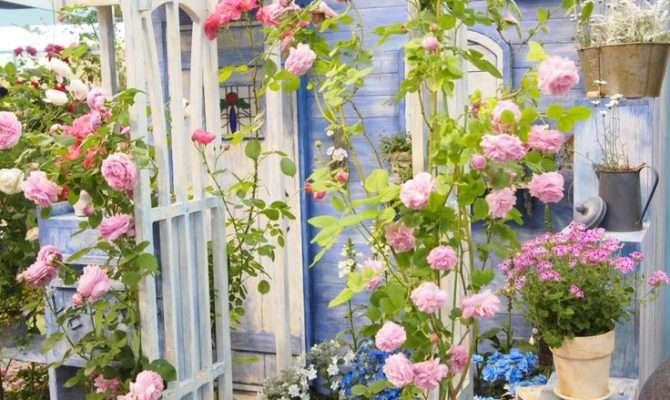 Garden Hobby Farm Ideas Pinterest