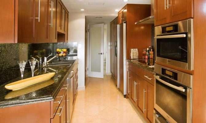 Modern Galley Kitchen Ideas Decozilla