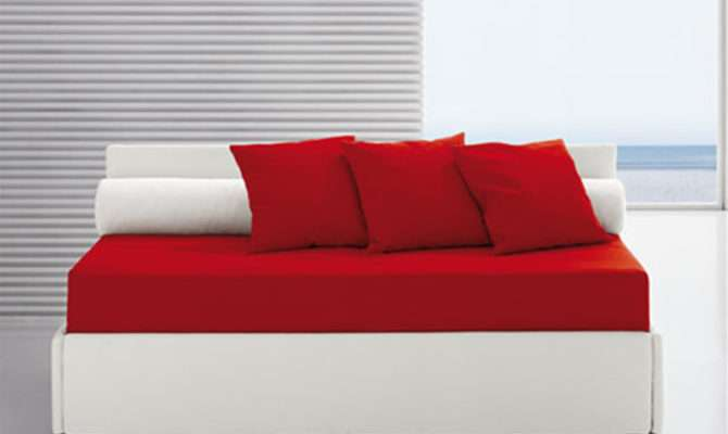 Modern Single Bed Designs Nisartmacka