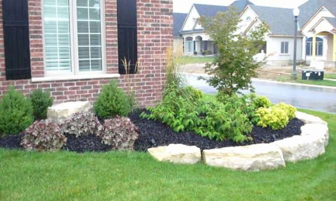 New Front House Landscaping Ideas