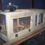 Quail House Built Son Not Bad First Time Cage Build