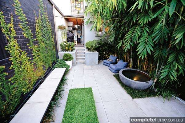 Real Backyard Inner City Courtyard Garden Design