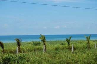 Real Palmas Yucatan Coast Land Lots Estate
