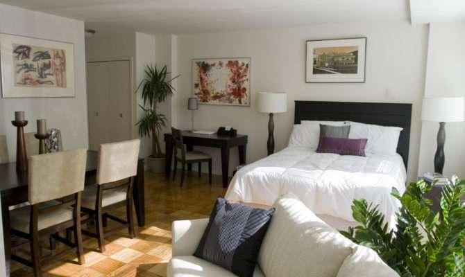 Square Shaped Studio Apartment Layout Trendvee