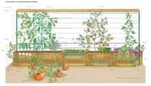 Straw Bale Gardening Archives Gardens Blog