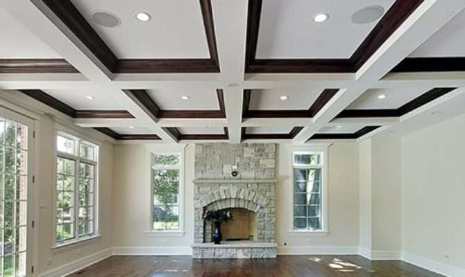 Stylish Unique Tray Ceilings Any Room
